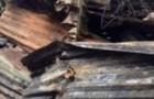 NOTE DE SYMPATHIE  Incendie de la bibliothèque de l'école des Frères de  Saint Joseph à Port-de-Paix